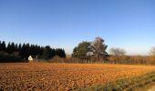 Trail Walk RETHEUIL - en forêt de Retz_76_dans les forêts de Retz et de Compiègne - Photo 60