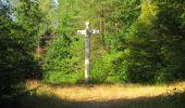 Randonnée Marche LACROIX-SAINT-OUEN - en forêt de Compiègne_35_la Croix Saint-Sauveur_le Ru du Goderu - Photo 59