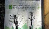 Randonnée Marche LONGPONT - en forêt de Retz_77_Longpont_Puiseux en Retz_AR - Photo 36