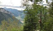 Trail Walk THONES - Les Glières depuis le Crêt - Photo 11