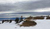 Randonnée Raquettes à neige DIVONNE-LES-BAINS - La Dole alt 1676m en raquette - Photo 4