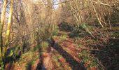 Randonnée A pied VILLERS-COTTERETS - le GR11A  dans la Forêt de Retz  - Photo 141