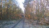 Trail Walk SAINT-JEAN-AUX-BOIS - en forêt de Compiègne_33_12_2019_les Tournantes de l'étang Saint-Jean et des Prés Saint-Jean - Photo 130