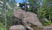 Trail Walk ALLARMONT - 2019-06-08 Marche Allarmont et ses rochers - Photo 1