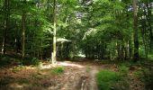 Randonnée Marche HARAMONT - en forêt de Retz_79_08_2019_vers Taillefontaine et Retheuil par les lisières - Photo 95