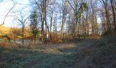 Trail Walk SAINT-JEAN-AUX-BOIS - en forêt de Compiègne_33_12_2019_les Tournantes de l'étang Saint-Jean et des Prés Saint-Jean - Photo 4