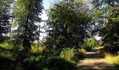 Trail Walk DAMPLEUX - en forêt de Retz_80_sur la Route Tortue et la Route Droite - Photo 252