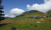 Randonnée Voiture LES CONTAMINES-MONTJOIE - chalets du Miage - Photo 6