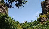 Randonnée Marche OTTROTT - Boucle Sainte Odile & mur Paien - Photo 14