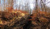 Trail Walk PIERREFONDS - en forêt de Compiègne_24_Tournantes sur le Voliard et sur la Fortelle_chaussée Brunehaut - Photo 56