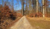 Trail Walk PIERREFONDS - en forêt de Compiègne_24_Tournantes sur le Voliard et sur la Fortelle_chaussée Brunehaut - Photo 145