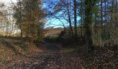 Randonnée Marche nordique Arlon - Wolkrange - Photo 8