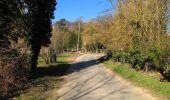 Trail Walk PIERREFONDS - en forêt de Compiègne_24_Tournantes sur le Voliard et sur la Fortelle_chaussée Brunehaut - Photo 155