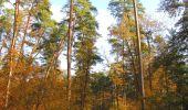 Randonnée Marche SAINT-JEAN-AUX-BOIS - en forêt de Compiègne_19_le Puits d'Antin_les Mares St-Louis_La Muette - Photo 46