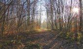 Trail Walk SAINT-JEAN-AUX-BOIS - en forêt de Compiègne_33_12_2019_les Tournantes de l'étang Saint-Jean et des Prés Saint-Jean - Photo 55