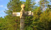 Randonnée Marche LACROIX-SAINT-OUEN - en forêt de Compiègne_35_la Croix Saint-Sauveur_le Ru du Goderu - Photo 60