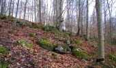 Trail On foot VIEUX-MOULIN - en forêt de Compiègne_23_la Grotte des Ramoneurs_le Mont Berny - Photo 114