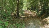 Randonnée Marche FATOUVILLE-GRESTAIN - Fatouville - balade du phare et du l'avoir - Photo 7