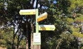 Randonnée Marche BARGEMON - Le bois de ciste - Photo 4