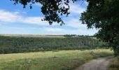 Randonnée Marche Yvoir - Durnal / 2020-07-19 - Photo 4