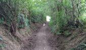 Randonnée Marche La Calamine - La Calamine Welky  - Photo 1