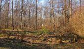 Trail Walk RETHEUIL - en forêt de Retz_76_dans les forêts de Retz et de Compiègne - Photo 84