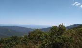 Randonnée Marche CAMPILE - Boucle de Monte Castellare - Photo 8