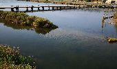 Trail Walk PEYRIAC-DE-MER - Peyriac et le tour de l'étang  - Photo 5
