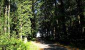 Trail Walk DAMPLEUX - en forêt de Retz_80_sur la Route Tortue et la Route Droite - Photo 238