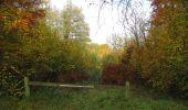 Randonnée Marche SAINT-JEAN-AUX-BOIS - en forêt de Compiègne_32_11_2019_les Tournantes de la Muette et sous la Tête Saint-Jean - Photo 149