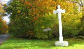 Randonnée Marche SAINT-JEAN-AUX-BOIS - en forêt de Compiègne_32_11_2019_les Tournantes de la Muette et sous la Tête Saint-Jean - Photo 196