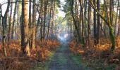 Trail Walk SAINT-JEAN-AUX-BOIS - en forêt de Compiègne_33_12_2019_les Tournantes de l'étang Saint-Jean et des Prés Saint-Jean - Photo 171