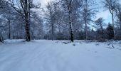 Trail Walk Sainte-Ode - rando lavacherie 29/12/2020 - Photo 24