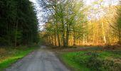 Randonnée Marche LONGPONT - en forêt de Retz_77_Longpont_Puiseux en Retz_AR - Photo 154