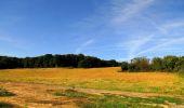 Randonnée Marche HARAMONT - en forêt de Retz_79_08_2019_vers Taillefontaine et Retheuil par les lisières - Photo 36