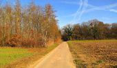 Trail On foot VIEUX-MOULIN - en forêt de Compiègne_23_la Grotte des Ramoneurs_le Mont Berny - Photo 69