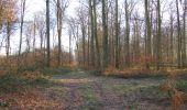 Trail Walk SAINT-JEAN-AUX-BOIS - en forêt de Compiègne_33_12_2019_les Tournantes de l'étang Saint-Jean et des Prés Saint-Jean - Photo 69