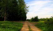 Randonnée Marche COYOLLES - en forêt de Retz_78_les rayons du Rond Capitaine - Photo 64
