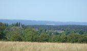 Randonnée Marche Wellin - RB-Lu-25_Jour 2_Au pays de Wellin-porte de l'Ardenne - Photo 1