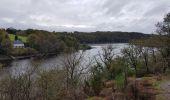 Trail Walk SAINT-PLANTAIRE - le rocher de la fileuse - Photo 6
