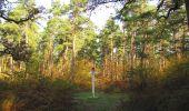 Randonnée Marche SAINT-JEAN-AUX-BOIS - en forêt de Compiègne_32_11_2019_les Tournantes de la Muette et sous la Tête Saint-Jean - Photo 103