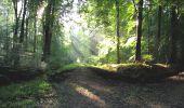 Randonnée A pied VILLERS-COTTERETS - le GR11A  dans la Forêt de Retz  - Photo 106