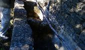 Randonnée Marche SUMENE - de cezas au prieuré aux cagnasse aux mont la fage - Photo 3
