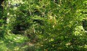 Trail Walk DAMPLEUX - en forêt de Retz_80_sur la Route Tortue et la Route Droite - Photo 127