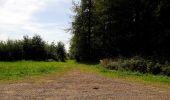 Randonnée Marche HARAMONT - en forêt de Retz_79_08_2019_vers Taillefontaine et Retheuil par les lisières - Photo 110