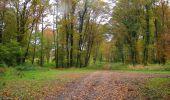 Randonnée A pied VILLERS-COTTERETS - le GR11A  dans la Forêt de Retz  - Photo 146