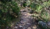 Trail Electric bike SAINT-ETIENNE-DU-VALDONNEZ - les laubies à st etienne du valdonnez - Photo 2
