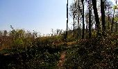 Randonnée Marche LONGPONT - en forêt de Retz_77_Longpont_Puiseux en Retz_AR - Photo 39