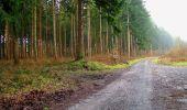 Randonnée A pied VILLERS-COTTERETS - le GR11A  dans la Forêt de Retz  - Photo 127