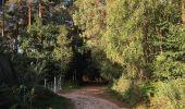 Randonnée Trail NEANT-SUR-YVEL - Autour des étangs à partir du gîte de tante Phonsine - Photo 1